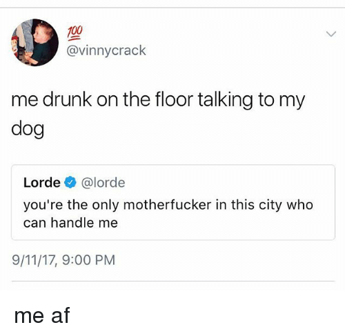 Drunked: 100  @vinnycrack  me drunk on the floor talking to my  dog  Lorde e》 @lorde  you're the only motherfucker in this city who  can handle me  9/11/17, 9:00 PM me af