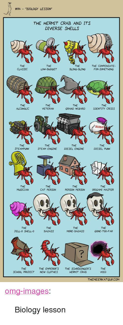 """Origami:  #114-""""BIOLOGY  LESSON""""  THE HERMIT CRAB AND ITS  DIVERSE SHELLS  0  THE  CLASSIC  THE  LOW-BUDGET  THE  BLING-BLING  THE COMPENSATE  FOR-SOMETHING  THE  ALCOHOLIC  THE  VETERAN  THE  GRAND WIZARD  THE  IDENTITY CRISIS  DIESE  THE  STEAMPUNK  THE  STEAM ENGINE  THE  DIESEL ENGINE  THE  DIESEL PUNK  THE  MUSICIAN  THE  CAT PERSON  THE  PERSON PERSON  THE  ORIGAMI MASTER  THE  JELL-0 SHELL-0  THE  BADAS  THE  MORE-BADASS  THE  GONE-TO0-FAR  THE  SCHOOL PROJECT  THE EMPEROR'STHE SCHRÖDINGER'S  NEW CLOTHES  THE  VOID  HERMIT CRAB  THEMEERKAT GUY.COM <p><a href=""""https://omg-images.tumblr.com/post/164402140942/biology-lesson"""" class=""""tumblr_blog"""">omg-images</a>:</p>  <blockquote><p>Biology lesson</p></blockquote>"""