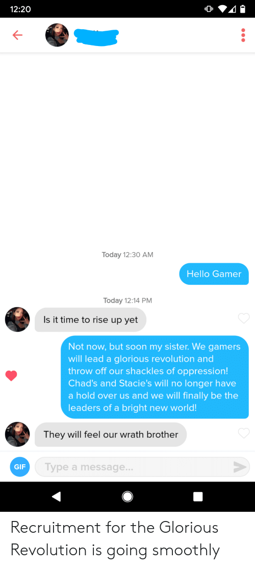 Gif, Hello, and Soon...: 12:20  Today 12:30 AM  Hello Gamer  Today 12:14 PM  Is it time to rise up yet  Not now, but soon my sister. We gamers  will lead a glorious revolution and  throw off our shackles of oppression!  Chad's and Stacie's will no longer have  a hold over us and we will finally be the  leaders of a bright new world!  They will feel our wrath brother  Type a message...  GIF  A Recruitment for the Glorious Revolution is going smoothly
