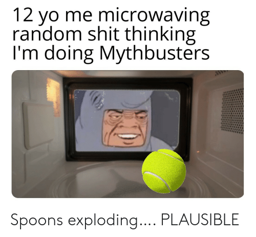 Shit, Yo, and MythBusters: 12 yo me microwaving  random shit thinking  I'm doing Mythbusters  ww Spoons exploding…. PLAUSIBLE