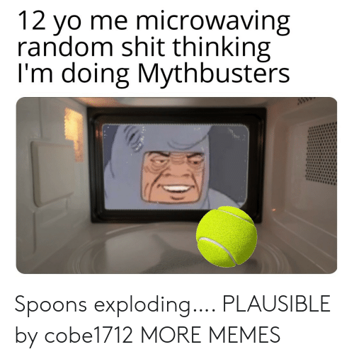 Dank, Memes, and Shit: 12 yo me microwaving  random shit thinking  I'm doing Mythbusters  ww Spoons exploding…. PLAUSIBLE by cobe1712 MORE MEMES