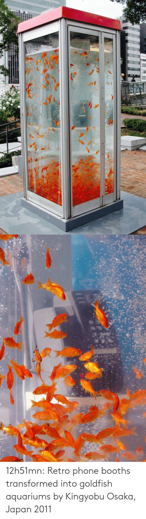Goldfish, Phone, and Tumblr: 12h51mn:  Retro phone booths transformed into goldfish aquariums by Kingyobu Osaka, Japan 2011