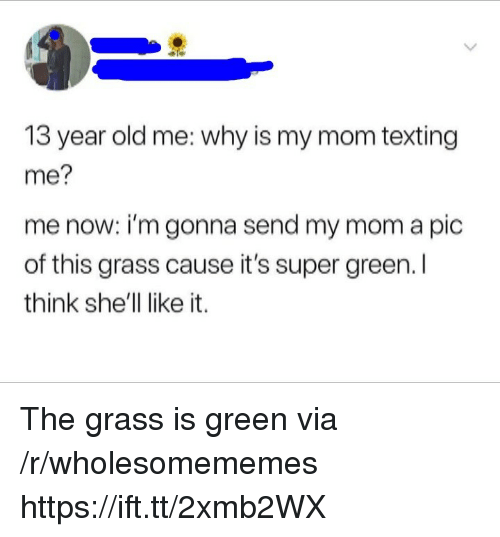 Mom Texting: 13 year old me: why is my mom texting  me?  me now: i'm gonna send my mom a pic  of this grass cause it's super green. l  think she'll like it. The grass is green via /r/wholesomememes https://ift.tt/2xmb2WX