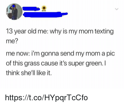 Mom Texting: 13 year old me: why is my mom texting  me?  me now: i'm gonna send my mom a pic  of this grass cause it's super green.  think she'll like it. https://t.co/HYpqrTcCfo