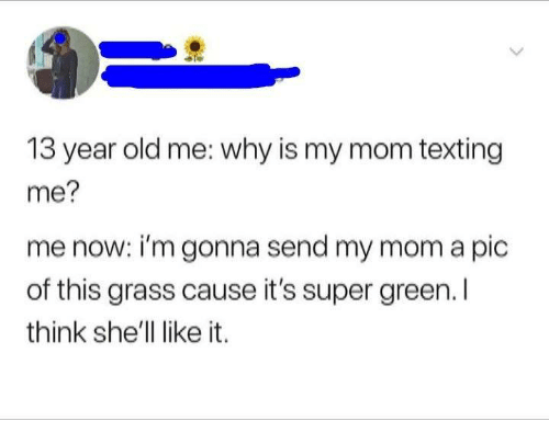 Mom Texting: 13 year old me: why is my mom texting  me?  me now: i'm gonna send my mom a pic  of this grass cause it's super green. l  think she'll like it.