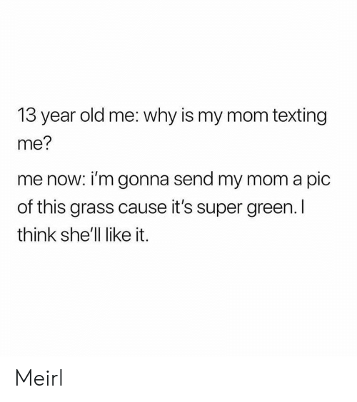 Mom Texting: 13 year old me: why is my mom texting  me?  me now: i'm gonna send my mom a pic  of this grass cause it's super green. I  think she'll like it. Meirl