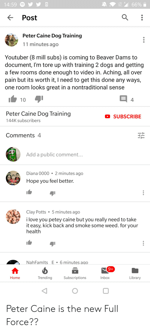 Dogs, Love, and Weed: 14:59  66%  Post  Peter Caine Dog Training  11 minutes ago  Youtuber (8 mill subs) is coming to Beaver Dams to  document, I'm tore up with training 2 dogs and getting  a few rooms done enough to video in. Aching, all over  pain but its worth it, I need to get this done any ways,  one room looks great in a nontraditional sense  10  4  Peter Caine Dog Training  SUBSCRIBE  144K subscribers  Comments 4  Add a public comment...  Diana 0000 2 minutes ago  Hope you feel better.  Clay Potts . 5 minutes ago  i love you petey caine but you really need to take  it easy, kick back and smoke some weed. for your  health  NahFamlts E 6 minutes ago  9+  Subscriptions  Inbox  Home  Trending  Library Peter Caine is the new Full Force??