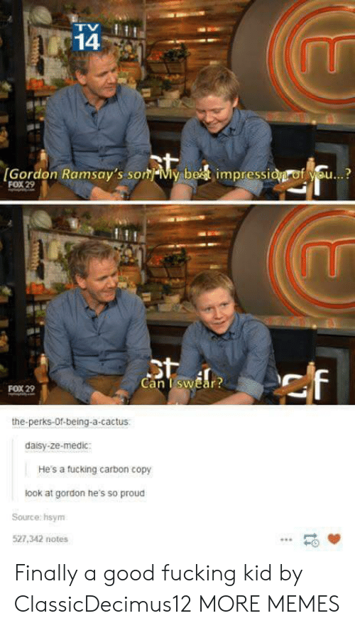 Dank, Fucking, and Memes: 14  [Gordon Ramsay's som-My be  impressi  f se..?  FOX 29  Can TswEar  FOX 29  the-perks-Of-being-a-cactus  daisy-ze-medic:  He's a tucking carbon copy  look at gordon he's so proud  Source: hsym  527,342 notes  -0 Finally a good fucking kid by ClassicDecimus12 MORE MEMES