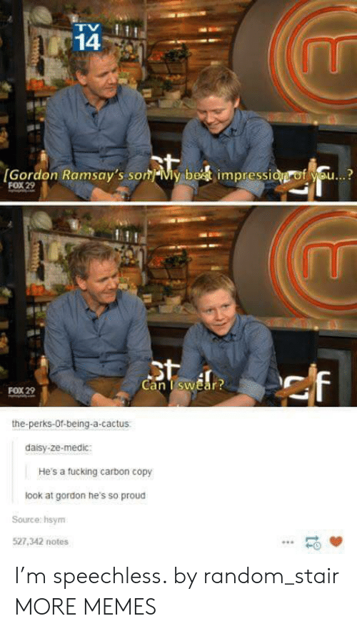 Dank, Fucking, and Memes: 14  [Gordon Ramsay's som My bet impressid of you...?  FOX 29  St  Can I swear?  ef  FOX 29  the-perks-Of-being-a-cactus  daisy-ze-medic:  He's a fucking carbon copy  look at gordon he's so proud  Source: hsym  527,342 notes I'm speechless. by random_stair MORE MEMES