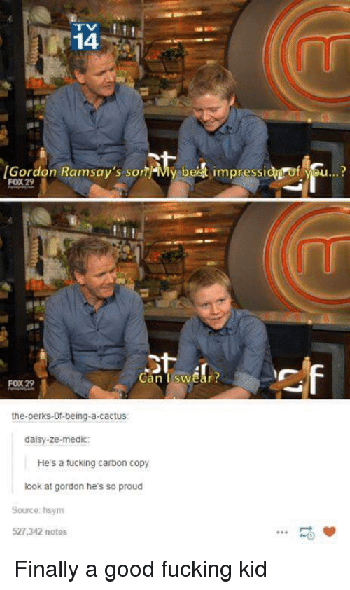 Fucking, Best, and Good: 14  Gordon Ramsay's sonMy best impressidgrof you...?  FOX 29  Can TswEar  FOX 29  the-perks-Of-being-a-cactus.  daisy-ze-medic  He's a fucking carbon copy  look at gordon he's so proud  Source hsynm  527,342 notes  HO Finally a good fucking kid