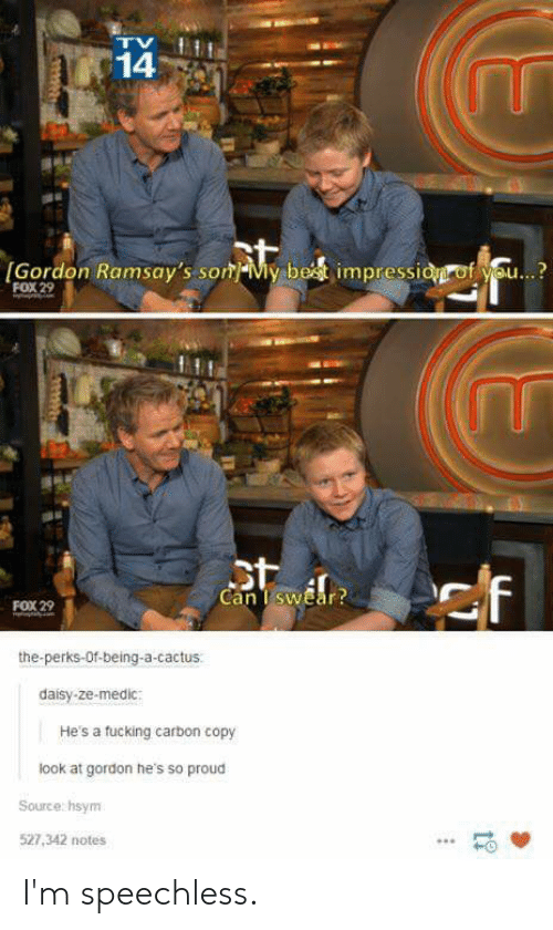 Fucking, Reddit, and Proud: 14  IGordon Ramsay's so My bet impressid of you...  FOX 29  st  Can I swear?  FOX 29  the-perks-Of-being-a-cactus  daisy-ze-medic  He's a fucking carbon copy  look at gordon he's so proud  Source: hsym  527,342 notes  tr I'm speechless.