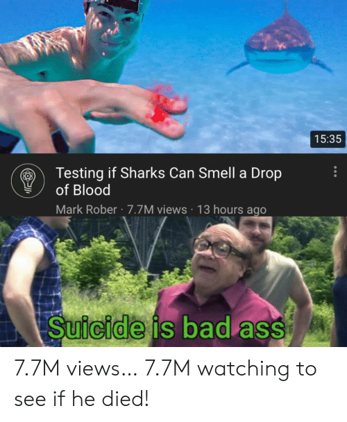 He Died: 15:35  Testing if Sharks Can Smell a Drop  of Blood  Mark Rober 7.7M views 13 hours ago  Suicide is bad ass 7.7M views… 7.7M watching to see if he died!