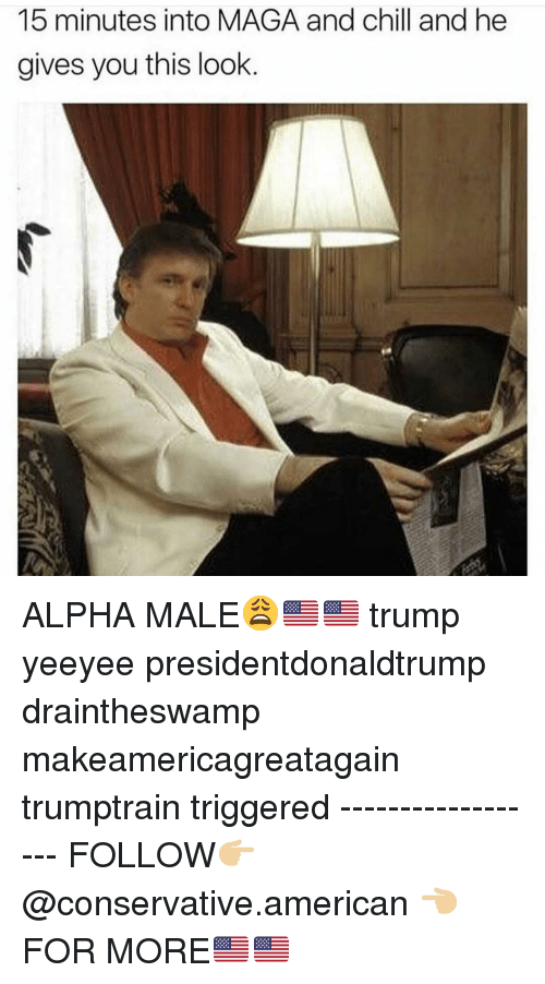 Chill, Memes, and American: 15 minutes into MAGA and chill and he  gives you this look ALPHA MALE😩🇺🇸🇺🇸 trump yeeyee presidentdonaldtrump draintheswamp makeamericagreatagain trumptrain triggered ------------------ FOLLOW👉🏼 @conservative.american 👈🏼 FOR MORE🇺🇸🇺🇸
