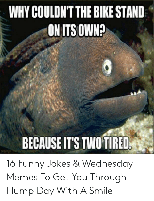 Wednesday: 16 Funny Jokes & Wednesday Memes To Get You Through Hump Day With A Smile