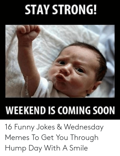 funny jokes: 16 Funny Jokes & Wednesday Memes To Get You Through Hump Day With A Smile