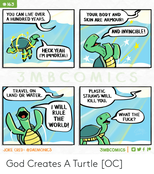 Turtle:  #163  YOU CAN LIVE OVER  A HUNDRED YEARS.  YOUR BODY AND  SKIN ARE ARMOUR!  AND INVINCIBLE!  НЕСК YEAH  I'M IMMORTAL!  3 MBCOMICS  TRAVEL ON  LAND OR WATER  PLASTIC  STRAWS WILL  KILL YOU.  IWILL  RULE  THE  WORLD!  WHAT THE  FUCK?  2014 K  3MBCOMICS f  NOKE CRED: @DAEMONIC3 God Creates A Turtle [OC]