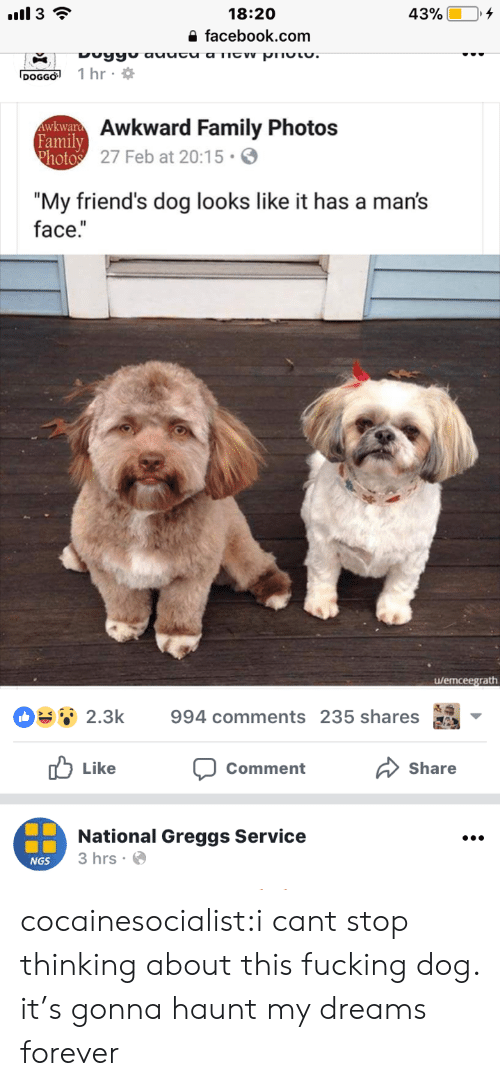 "Facebook, Family, and Friends: 18:20  a facebook.com  DOGGO 1 hr  Awkward Family Photos  27 Feb at 20:15.  Family  ""My friend's dog looks like it has a man's  face.""  u/emceegrath  OSsǐ 2.3k  994 comments 235 shares as  山Like  Share  Comment  National Greggs Service  3 hrs.  NGS cocainesocialist:i cant stop thinking about this fucking dog. it's gonna haunt my dreams forever"