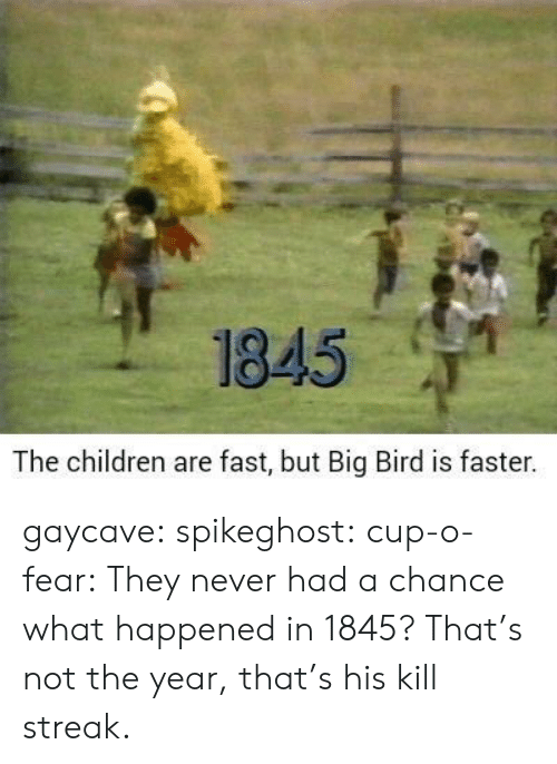 Big Bird: 1845  The children are fast, but Big Bird is faster. gaycave:  spikeghost:  cup-o-fear: They never had a chance what happened in 1845?   That's not the year, that's his kill streak.