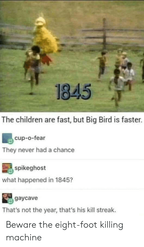 Big Bird: 1845  The children are fast, but Big Bird is faster.  cup-o-fear  They never had a chance  spikeghost  what happened in 1845?  gaycave  That's not the year, that's his kill streak. Beware the eight-foot killing machine