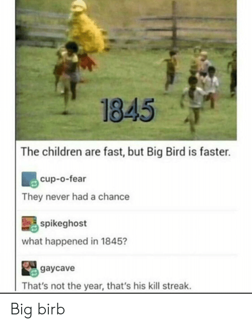 Big Bird: 1845  The children are fast, but Big Bird is faster.  cup-o-fear  They never had a chance  spikeghost  what happened in 1845?  gaycave  That's not the year, that's his kill streak. Big birb
