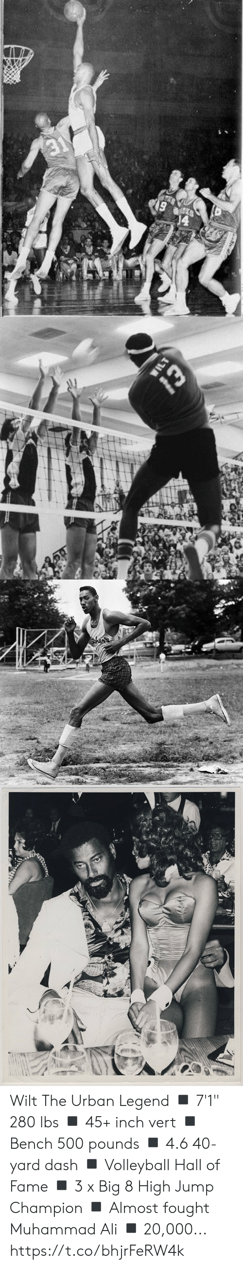 """Ali, Memes, and Muhammad Ali: 19   WILT  Whe   then's Wilt The Urban Legend  ◾️ 7'1"""" 280 lbs ◾️ 45+ inch vert ◾️ Bench 500 pounds ◾️ 4.6 40-yard dash ◾️ Volleyball Hall of Fame ◾️ 3 x Big 8 High Jump Champion ◾️ Almost fought Muhammad Ali ◾️ 20,000... https://t.co/bhjrFeRW4k"""