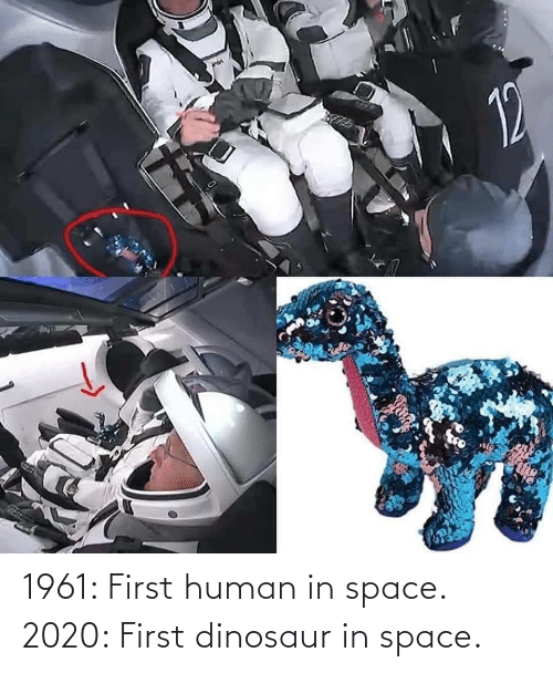 Space: 1961: First human in space. 2020: First dinosaur in space.