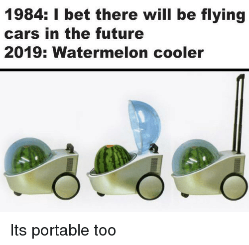 portable: 1984: I bet there will be flying  cars in the future  2019: Watermelon cooler Its portable too