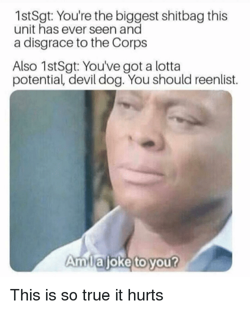 Memes, True, and Devil: 1stSgt: You're the biggest shitbag this  unit has ever seen and  a disgrace to the Corps  Also 1stSgt: You've got a lotta  potential, devil dog. You should reenlist.  Amlajoke to you? This is so true it hurts