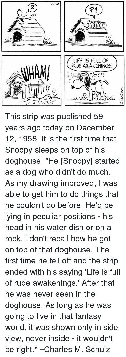 """doghouse: /2-12  2  2  NOOp,  NOOp  LIFE IS FULL OF  RUDE AWAKENINGS This strip was published 59 years ago today on December 12, 1958. It is the first time that Snoopy sleeps on top of his doghouse.   """"He [Snoopy] started as a dog who didn't do much. As my drawing improved, I was able to get him to do things that he couldn't do before. He'd be lying in peculiar positions - his head in his water dish or on a rock. I don't recall how he got on top of that doghouse. The first time he fell off and the strip ended with his saying 'Life is full of rude awakenings.' After that he was never seen in the doghouse. As long as he was going to live in that fantasy world, it was shown only in side view, never inside - it wouldn't be right."""" –Charles M. Schulz"""
