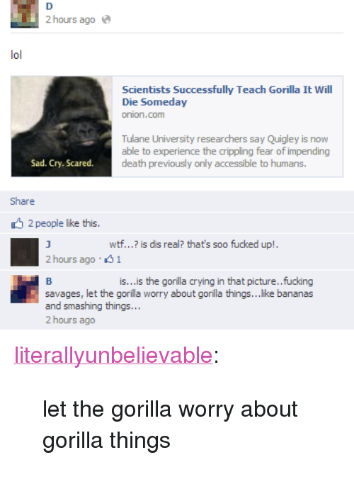 """Crying, Fucking, and Target: 2 hours ago  Scientists Successfully Teach Gorilla It Will  Die Someday  Tulane University researchers say Quigley is now  able to experience the crippling fear of impending  death previously only accessible to humans.  Sad. Cry. Scared.  Share  2 people like this.  wtf...? is dis real? that's soo fucked up!  2 hours ago 1  is...is the gorilla crying in that picture..fucking  savages, let the gorilla worry about gorilla things...like bananas  and smashing things..  2 hours ago <p><a class=""""tumblr_blog"""" href=""""http://literallyunbelievable.tumblr.com/post/36509952970"""" target=""""_blank"""">literallyunbelievable</a>:</p> <blockquote> <p>let the gorilla worry about gorilla things</p> </blockquote>"""