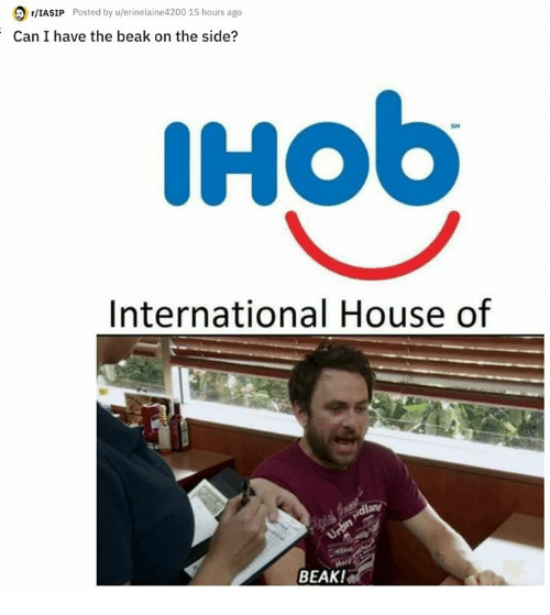 Memes, House, and International: 2 /IASIP Posted by u/erinelaine4200 15 hours ago  Can I have the beak on the side?  IHob  SM  International House of  BEAK