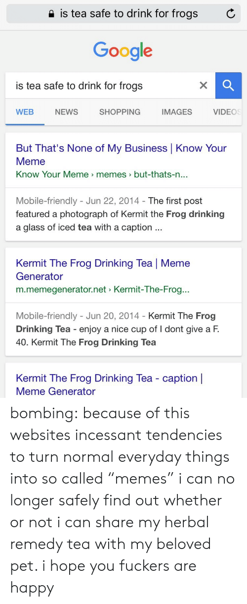 "know your meme: 2 is tea safe to drink for frogs  C  Google  is tea safe to drink for frogs  WEB  NEWS  SHOPPING  IMAGES  VIDEOS  But That's None of My Business Know Your  Meme  Know Your Meme memes>but-thats-n  ...  Mobile-friendly - Jun 22, 2014- The first post  featured a photograph of Kermit the Frog drinking  a glass of iced tea with a caption  Kermit The Frog Drinking Tea | Meme  Generator  m.memegenerator.net Kermit-The-Frog..  Mobile-friendly - Jun 20, 2014 - Kermit The Frog  Drinking Tea enjoy a nice cup of I dont give a F.  40. Kermit The Frog Drinking Tea  Kermit The Frog Drinking Tea - caption |  Meme Generator bombing:  because of this websites incessant tendencies to turn normal everyday things into so called ""memes"" i can no longer safely find out whether or not i can share my herbal remedy tea with my beloved pet. i hope you fuckers are happy"