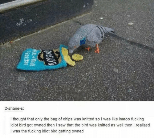 Fucking, Saw, and Idiot: 2-shane-s:  I thought that only the bag of chips was knitted so I was like Imaoo fucking  idiot bird got owned then I saw that the bird was knitted as well then I realized  I was the fucking idiot bird getting owned