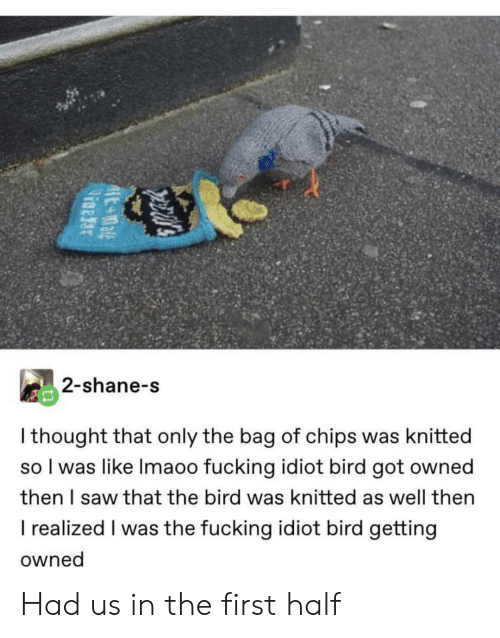 Fucking, Saw, and Idiot: 2-shane-s  I thought that only the bag of chips was knitted  so I was like Imaoo fucking idiot bird got owned  then I saw that the bird was knitted as well then  I realized I was the fucking idiot bird getting  owned Had us in the first half