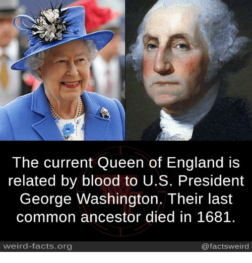 England, Facts, and Memes: 2  The current Queen of England is  related by blood to U.S. President  George Washington. Their last  common ancestor died in 1681.  weird-facts.org  @factsweird