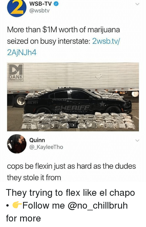 Chapo: 2  WSB-TV  @wsbtv  More than $1M worth of marijuana  seized on busy interstate: 2wsb.tv/  2AjNJh4  DANK  MEMEOtOGY  IAL 9  SHERIF  Quinn  @_KayleeTho  cops be flexin just as hard as the dudes  they stole it from They trying to flex like el chapo • 👉Follow me @no_chillbruh for more