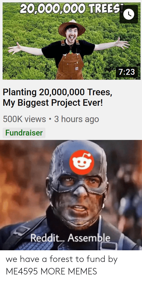 Dank, Memes, and Reddit: 20,000,000 TREES  7:23  Planting 20,000,000 Trees,  My Biggest Project Ever!  500K views 3 hours ago  Fundraiser  Reddit... Assemble  uME4SSS we have a forest to fund by ME4595 MORE MEMES