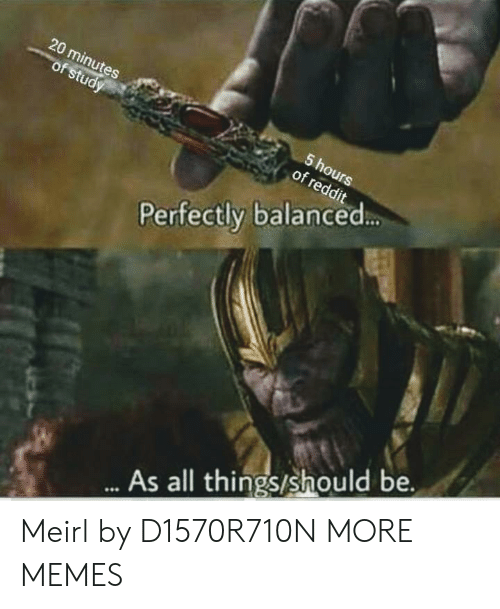 Dank, Memes, and Reddit: 20 minutes  of study  5 hours  of reddit  Perfectly balanced...  ..As all things/should be. Meirl by D1570R710N MORE MEMES