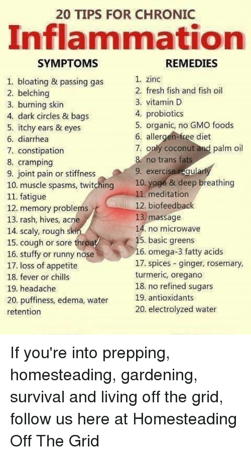 20 TIPS FOR CHRONIC Inflammation REMEDIES SYMPTOMS 1 Zinc 1