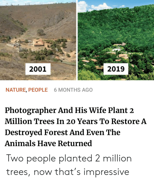 Returned: 2001  2019  NATURE, PEOPLE  6 MONTHS AGO  Photographer And His Wife Plant 2  Million Trees In 20 Years To Restore A  Destroyed Forest And Even The  Animals Have Returned Two people planted 2 million trees, now that's impressive