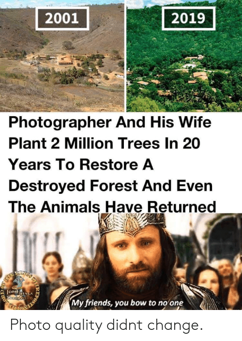 Returned: 2001  2019  Photographer And His Wife  Plant 2 Million Trees In 20  Years To Restore A  Destroyed Forest And Even  The Animals Have Returned  RIXS  LORdNGS  Shzeporiang  My friends, you bow to no one  IR  203 Photo quality didnt change.