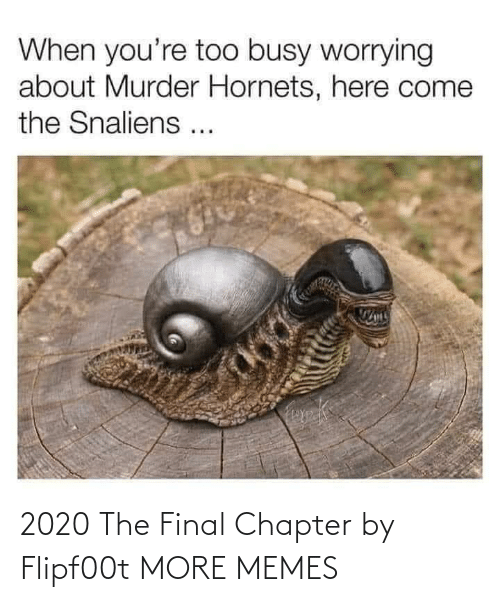 The Final: 2020 The Final Chapter by Flipf00t MORE MEMES