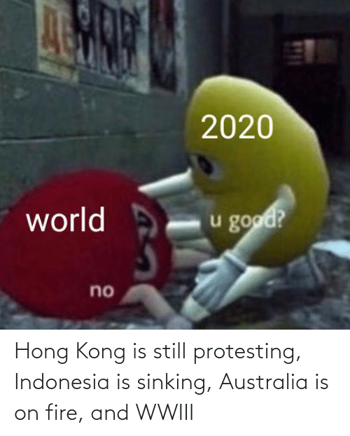 Indonesia: 2020  world  u good?  no Hong Kong is still protesting, Indonesia is sinking, Australia is on fire, and WWIII