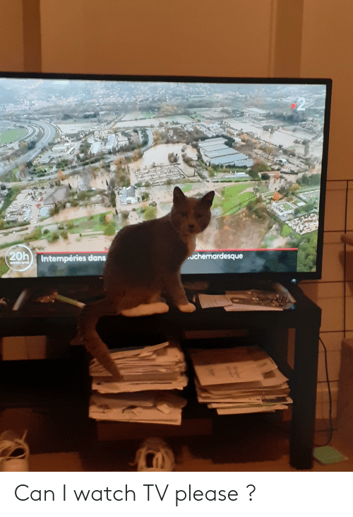 Watch, Can, and Please: 20h  uchemardesque  Intempéries dans  week-end Can I watch TV please ?