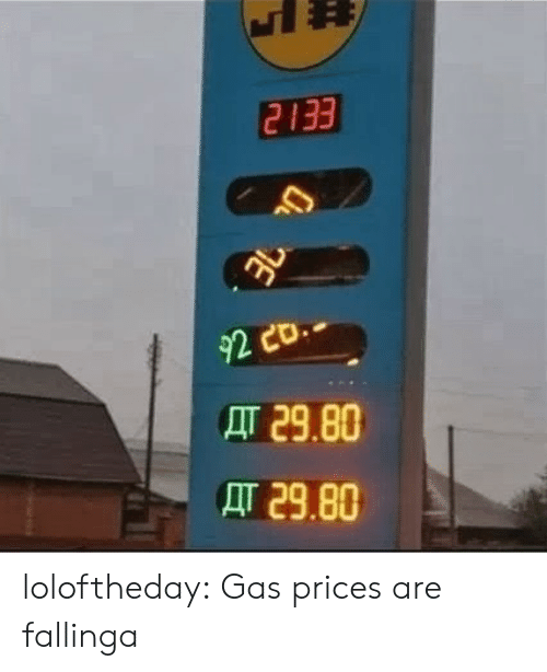 Tumblr, Blog, and Gas Prices: 2133  92  AT 29.80  AT 29.80 loloftheday:  Gas prices are fallinga