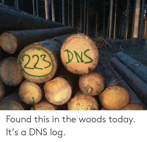 woods: 223 DNS Found this in the woods today. It's a DNS log.