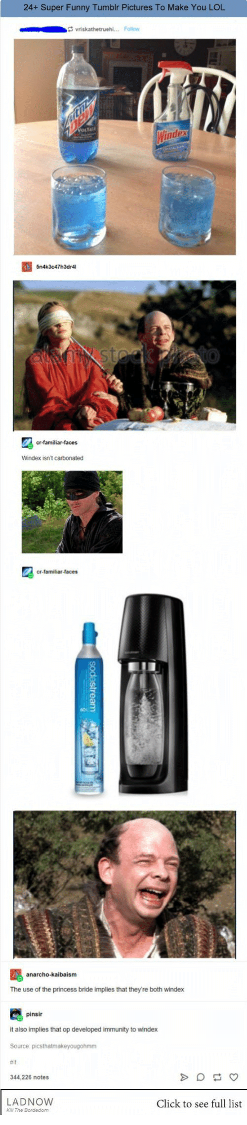 Click, Funny, and Lol: 24+ Super Funny Tumblr Pictures To Make You LOL  Windex isnt carbonated  cr-familiar-faces  anarcho-kaibaism  The use of the princess bride implies that they're both windex  pinsir  it also implies that op developed immunity to windex  344,226 notes  LADNOWw  Click to see full list  Kall The Bordedom