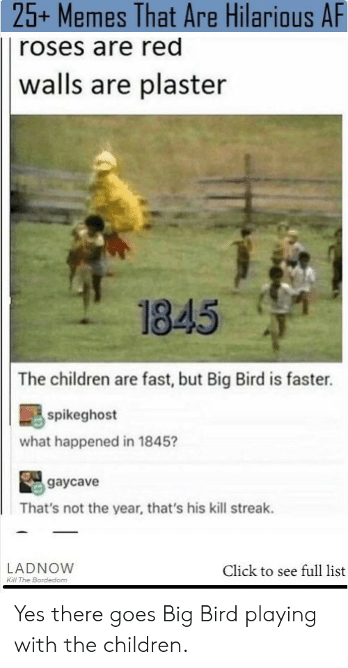 Af, Children, and Click: 25+ Memes That Are Hilarious AF  roses are red  walls are plaster  1845  The children are fast, but Big Bird is faster.  spikeghost  what happened in 1845?  gaycave  That's not the year, that's his kill streak.  LADNOW  Click to see full list  Kill The Bordedom Yes there goes Big Bird playing with the children.