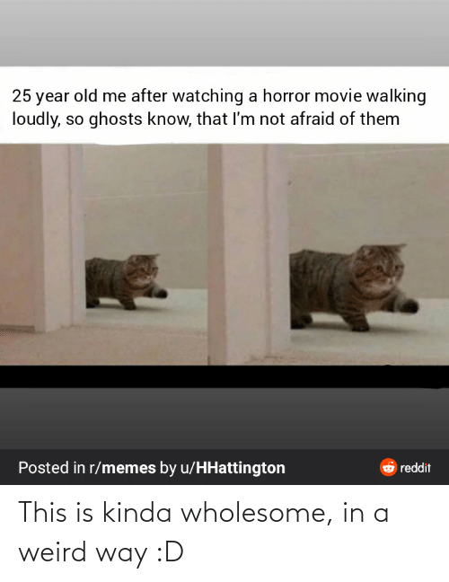 ghosts: 25 year old me after watching a horror movie walking  loudly, so ghosts know, that I'm not afraid of them  Posted in r/memes by u/HHattington  6 reddit This is kinda wholesome, in a weird way :D