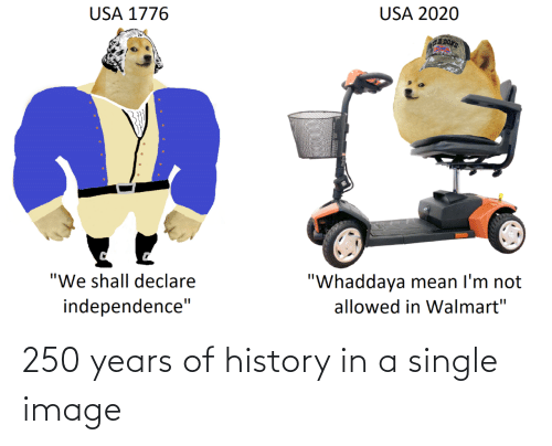Image: 250 years of history in a single image